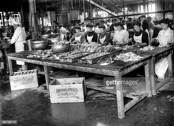Women working in the preparation of fishes Amieux brothers canning factory Sauzon 1911