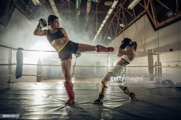 女性のボクシングのリングでの戦い!