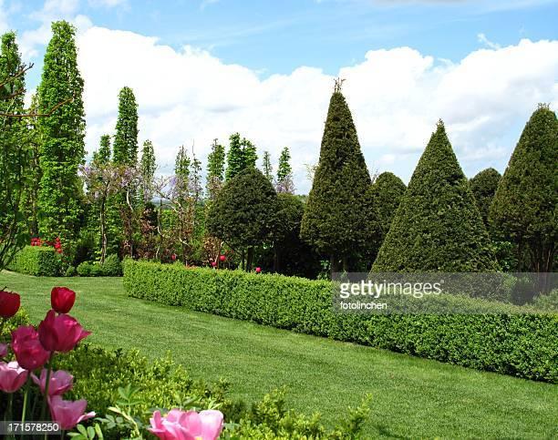 Superbe vue sur le jardin