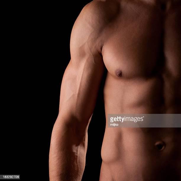 Wunderbare Männlicher torso