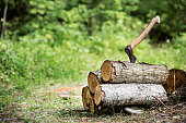 wood and axe in tre forest