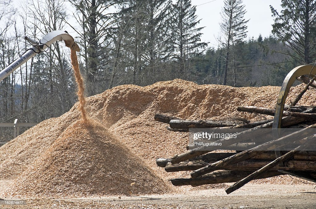 Wood chip piles and raw timber