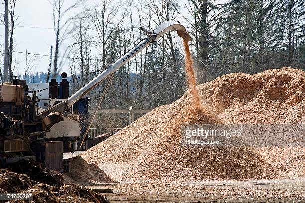 Wood chips spewing from spout at sawmill