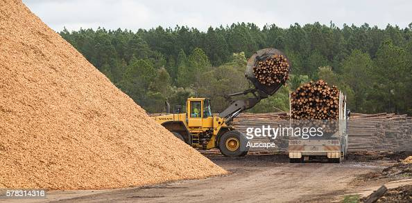 Medium Density Fiberboard Lowe S ~ Truck chips stock photos and pictures getty images