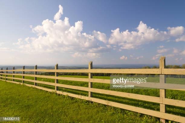Céu cerca de madeira & tarde