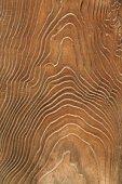 Wood grain