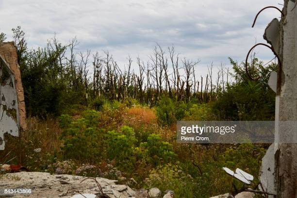 A wood is seen from an Ukrainan frontline position on September 06 2017 in Avdiivka Ukraine The frontlinecity Avdiivka is located on the outskirsts...