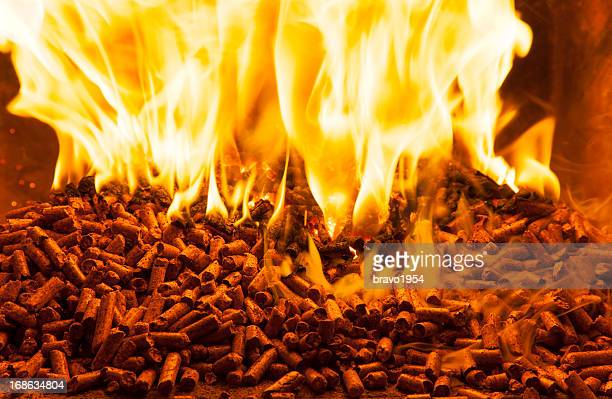 Wood pellets producing a roaring fire