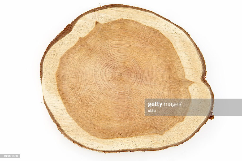 Wood : Stock Photo