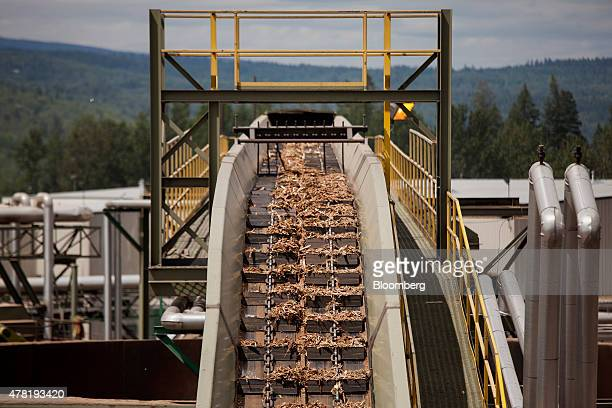 Wood scraps move along a conveyor belt before becoming sawdust at the West Fraser Timber Co sawmill in Quesnel British Columbia Canada on Friday June...