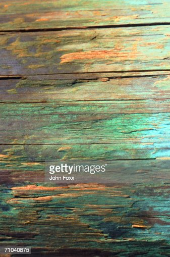 wood structure : Stock Photo