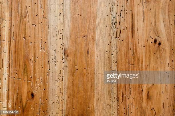 Wood texture: Aged elm