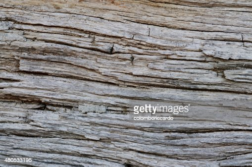Wood Texture Background : Stock Photo