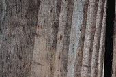 closeup wood pattern