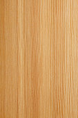 Wood Texture . European larch.SEE ALSO: