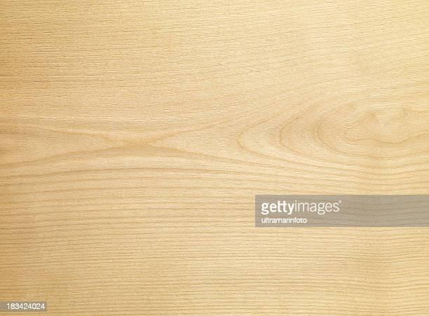 Holz Textur-Silver birch