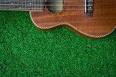 Wood ukulele on green grass background.