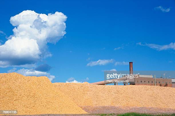 Woodchip pile at a paper mill
