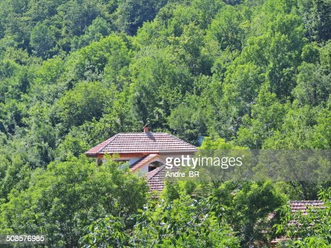 Wooded mountains. : Stock Photo