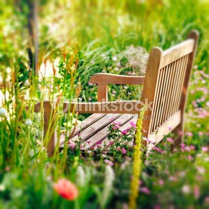 Banc En Bois Dans Un Jardin De Fleurs Sauvages Carré Composition ...