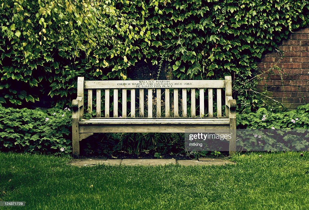 Wooden bench on grass with green leafy background