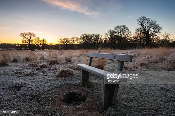 wooden bench sunrise
