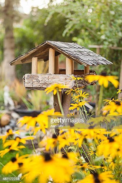 Wooden birdhouse in garden