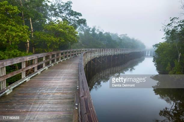 Wooden boardwalk at Robinson Preserve, Bradenton, Florida, USA