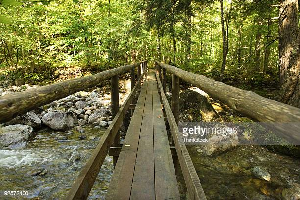 Wooden bridge crossing river, Adirondacks, New York