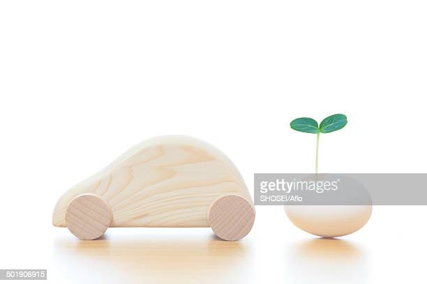 Wooden car and leaf sprouting from egg