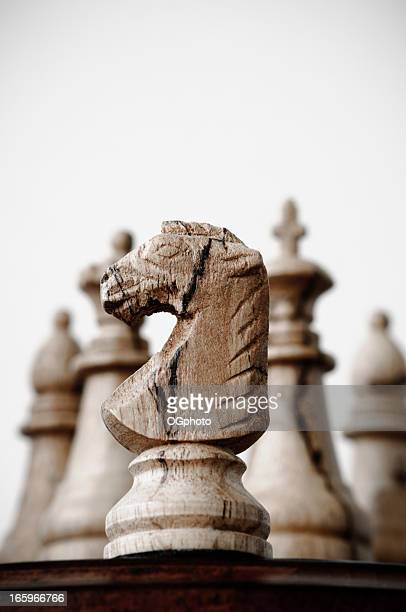 Wooden chess knight and pieces