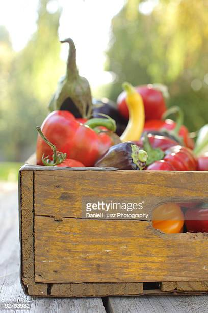 Wooden crate full of Vegtables
