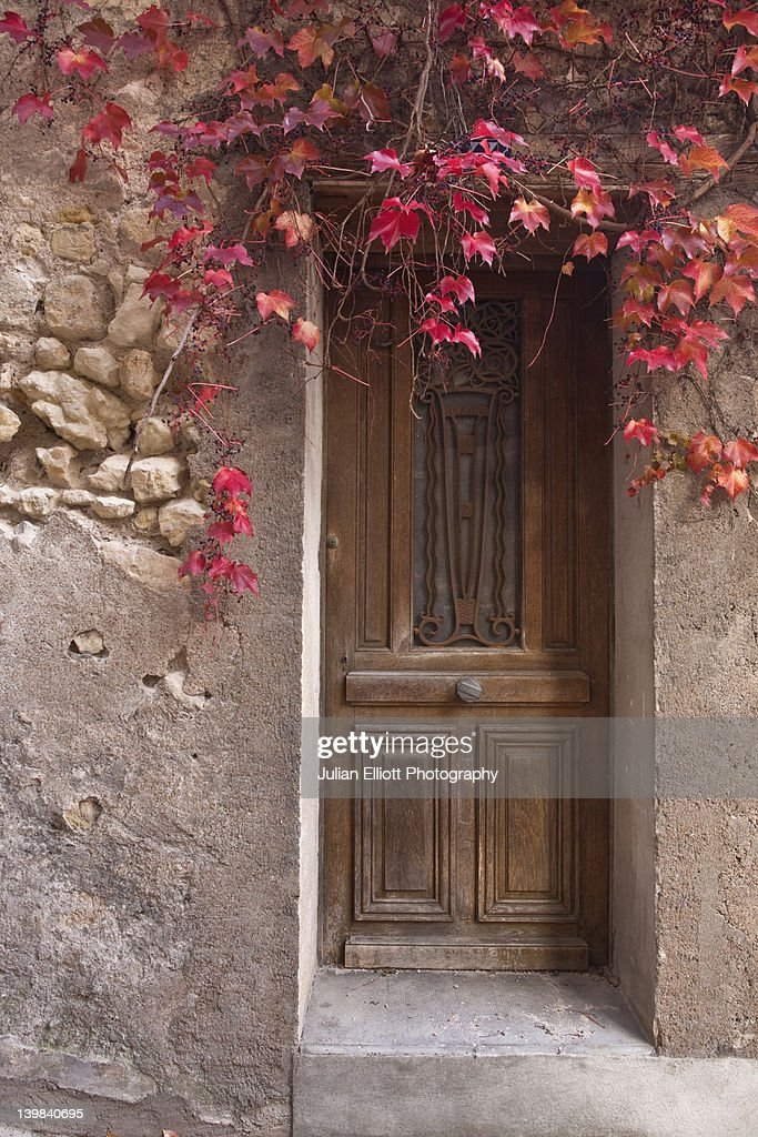 Wooden doorway with ivy, Tours, France. : Stock Photo