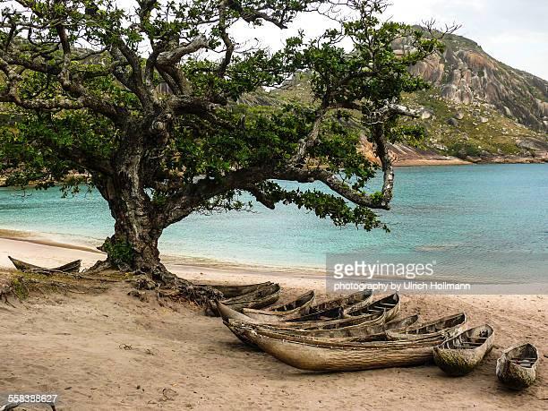Wooden dugout canoes on beach, Madagascar