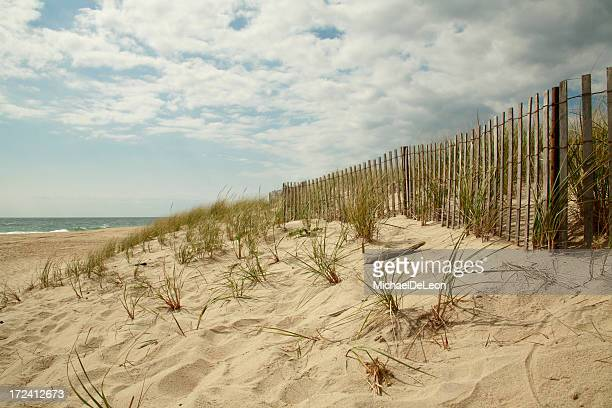 Wooden fence running along dunes