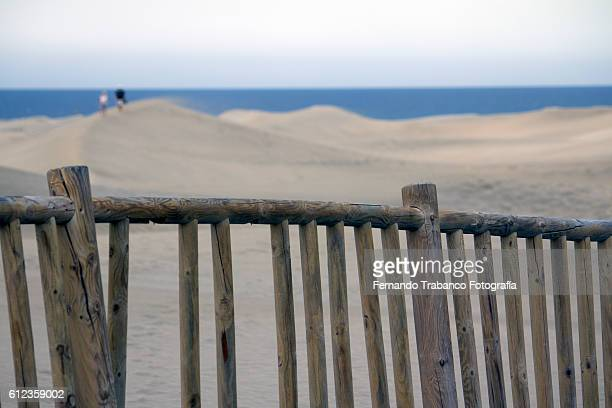 wooden fence surrounding sand dunes