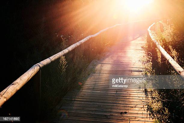 Wooden footbridge at sunset in Andalusia, southern Spain.