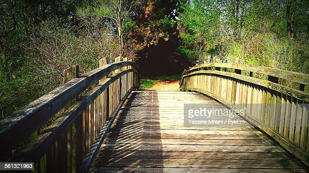 Wooden Footbridge In Garden