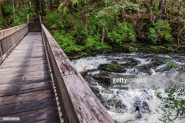Wooden footbridge over a rushing stream in the temperate rainforest of Tongass National Forest