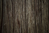 Wooden old background classic style emotion. Close up wooden plank texture