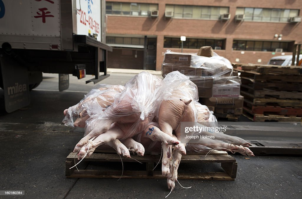 CONTENT] A wooden pallet of pig carcasses rests next to a delivery truck in Chinatown, New York City, waiting to be loaded into a nearby restaurant kitchen for butchering and turning into various Chinese pork dishes.
