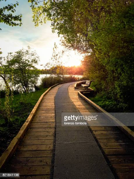 A wooden path to the lake