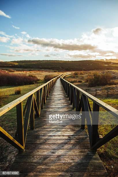 Sentier en bois dans les dunes