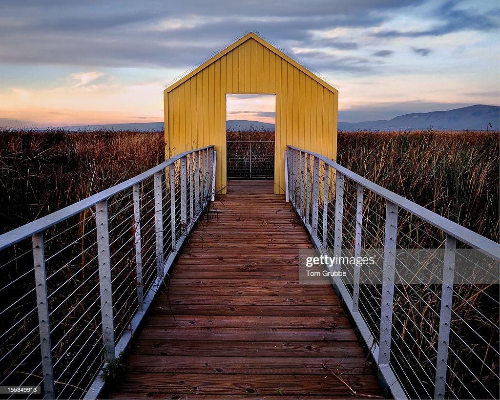 Wooden pier in grass : Stock Photo