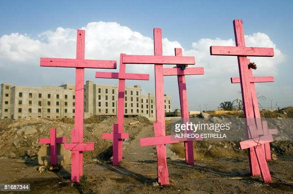 Wooden pink crosses are seen in the place where the corpses of eight murdered women were found in 2001 in Ciudad Juarez state of Chihuahua north...