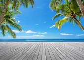 Wooden platform under palm trees beside tropical sea
