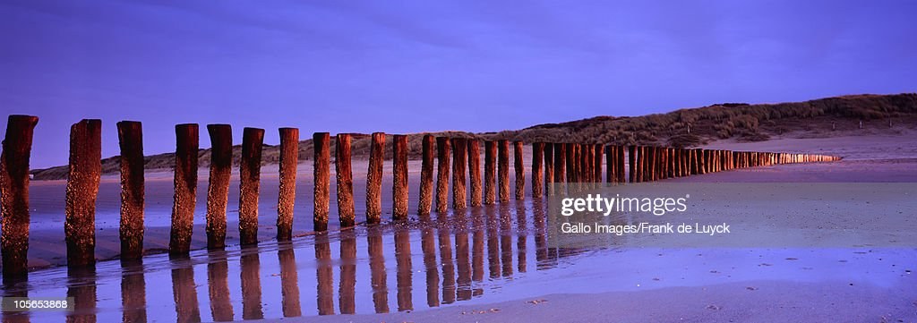 Wooden poles during dusk hours at beach of Cadzand, Zeeland Province, Netherlands : Stock Photo