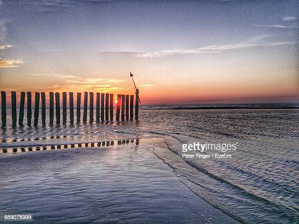 Wooden Poles In The Sea At Sunrise