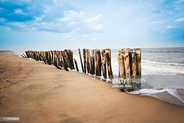 Wooden posts on the beach, Pondicherry, India