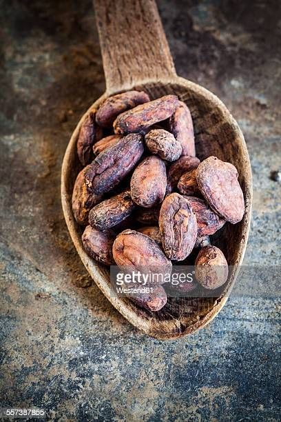 Wooden spoon of cocoa beans